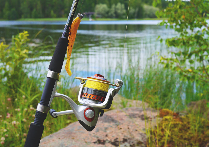 Best Spinning Reel Under 50